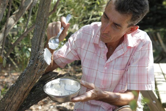 huiles essentielles au jardin avec Jean-Yves Meignen