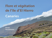 couverture flore vegetation ile el hierro