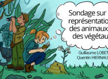 sondage sur les représentations des animaux et des végétaux