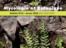 Couverture Mycologie et botanique numéro 35