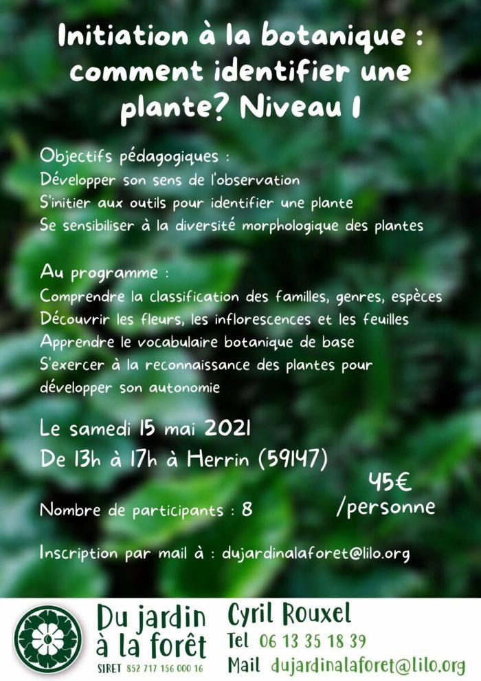 Initiation à la botanique _ comment identifier une plante_ Niveau 1