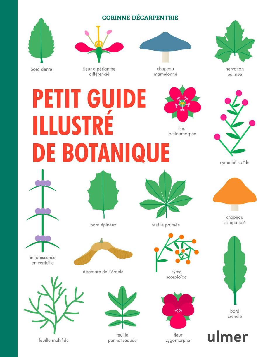 couverture petit guide illustré de botanique