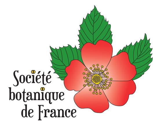 logotype SBF