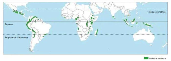 Répartition des forêts tropicales de montagne dans le monde.