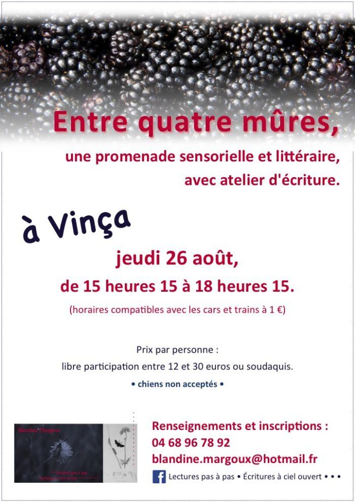 Blandine Margoux - Mûres - 26 août
