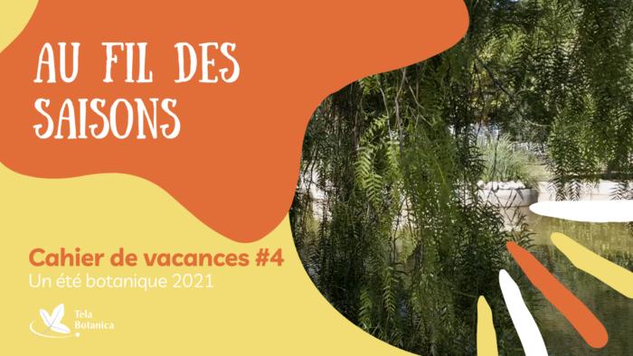 Introsoutros Cahiers de vacances(7)