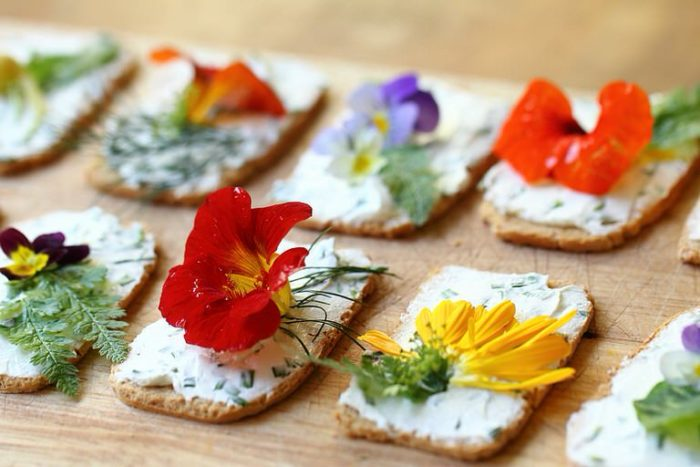 Sortie Délicieuses fleurs sauvages comestibles