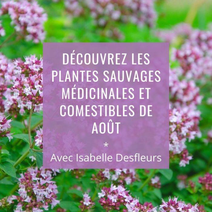 Sortie Plantes sauvages comestibles et médicinales Paris