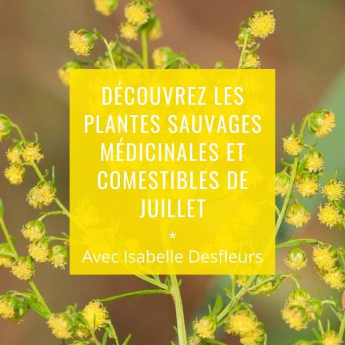 Sortie Plantes sauvages médicinales comestibles juillet Paris