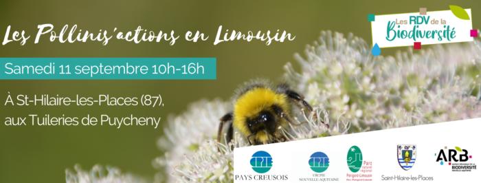 visuel web Les Pollinis'actions en Limousin (2)