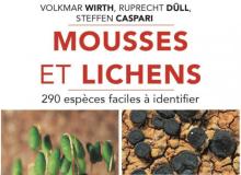 couverture mousses et lichens