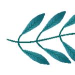 Logo du projet eFAN – Groupe flore d'Afrique du Nord