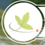 Logo du projet Exposition Botanique et Numérique
