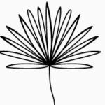 Logo du projet Flore de Guyane