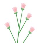 Logo du projet Les noms vernaculaires des plantes