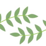 Logo du projet Archive Flore électronique (eflore)