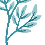 Logo du projet Flora Septentrionalis
