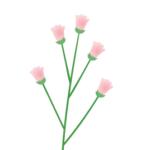 Logo du projet Botanique générale