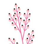Logo du projet Flore Tropicale