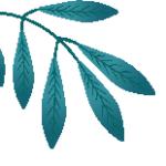 Logo du projet Bryophytes – Discussion et Projet Chorologie
