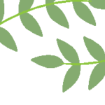 Logo du projet Ethnobotanique