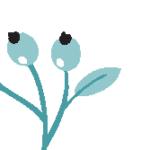 Logo du projet Lichens